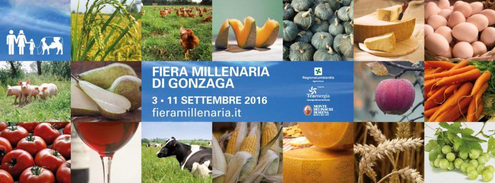 Oltrepò Mantovano in Fiera Millenaria di Gonzaga - 3 - 11 settembre 2016
