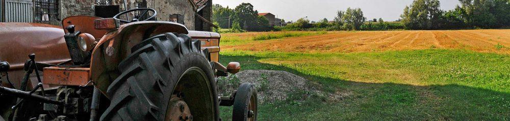 Sistema Socio Economico e Rurale