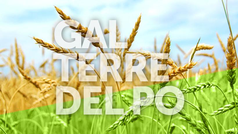 Presentazione del nuovo Piano di Sviluppo Locale 2014/2020 – GAL TERRE DEL PO