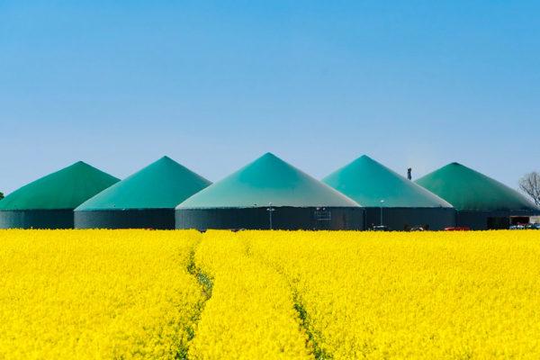 Informazioni sugli impianti di Biometano