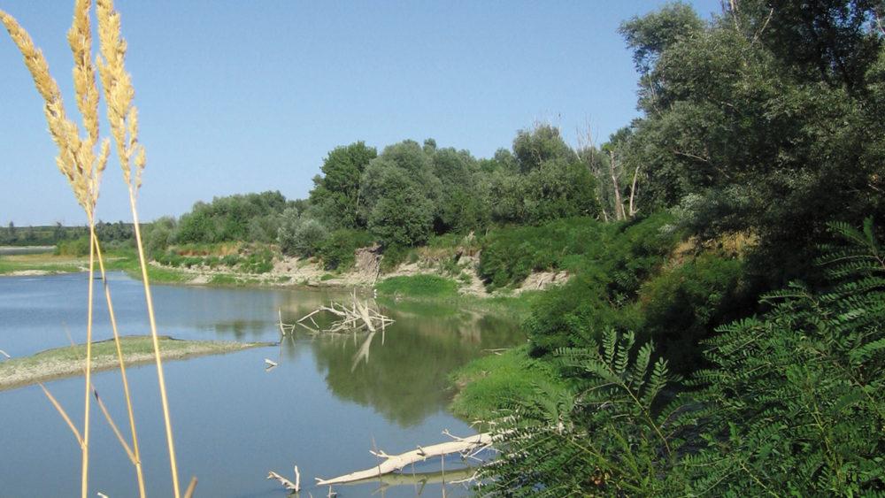 Calendario degli eventi del Sistema Parchi Oltrepò Mantovano