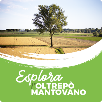 Visitare ed esplorare l'Oltrepò Mantovano